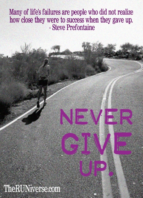 Never Give Up !!     #ENDALZ